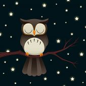 stock photo of storybook  - Illustration of a cute cartoon owl sleeping under a starry night sky - JPG