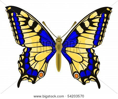 Butterfly Papilio Machaon Linnaeus.eps