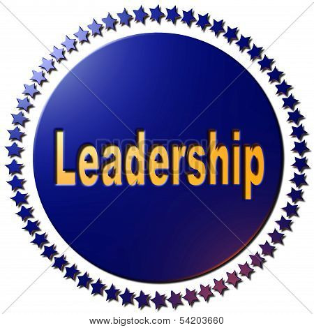Leadership (blue)