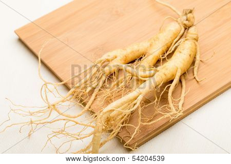 Fresh ginseng stick on the wooden plank