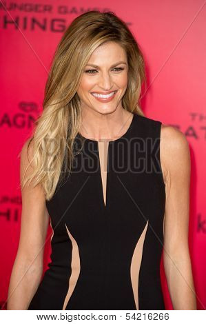 LOS ANGELES, CA - NOVEMBER 18: Sportscaster Erin Andrews arrives at the premiere of The Hunger Games: Catching Fire at the Nokia Theater in Los Angeles, CA on November 18, 2013