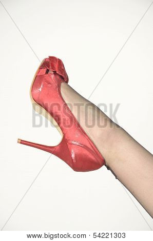 Red Shoe with Black Nylon