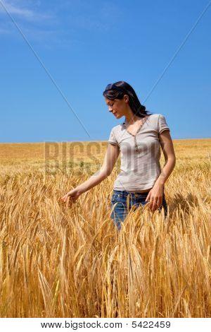 Woman In A Field Of Barley