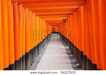 A walking path leads through a tunnel of torii gates