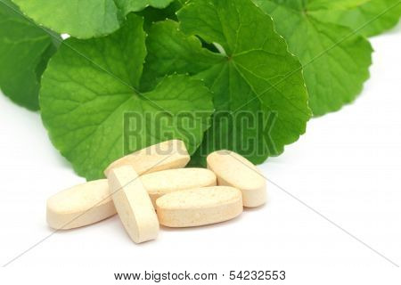 Medicinal Thankuni Leaves With Pills