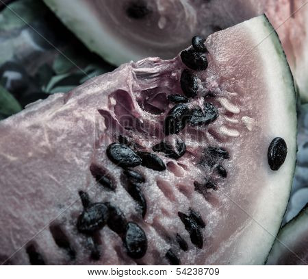 close up of the rotten watermelon