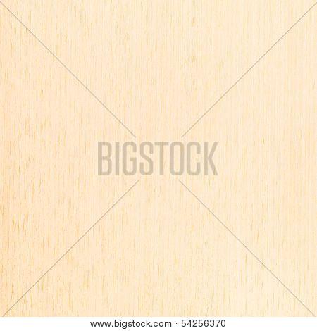 Texture White Beech , Wood Grain