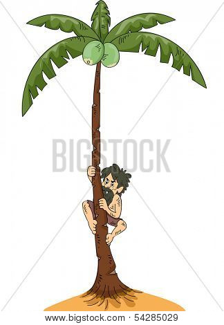 Illustration of a Man Stranded on an Island Climbing a Coconut Tree