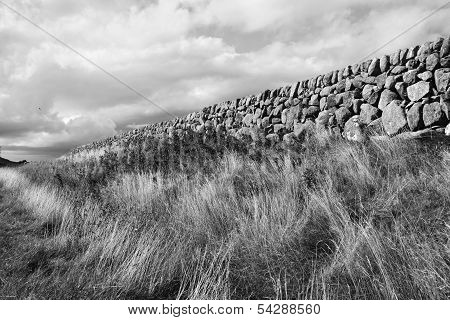 Stone Wall - Black & Withe