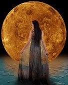 picture of night gown  - Ice princess in front of a Venus - JPG