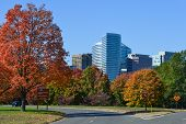 pic of rosslyn  - Washington DC - JPG