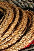 picture of buckaroo  - rope - JPG
