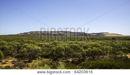 Panoramic views of Australian forest, iron mining South Australia