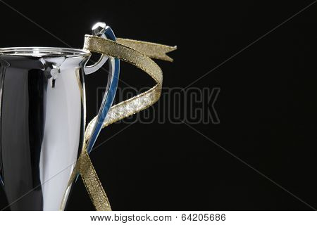 silver cup and the golden ribbon