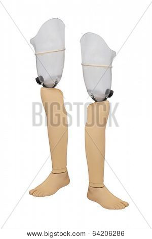 artificial limb on the white background