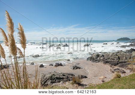 Coastal horizons.