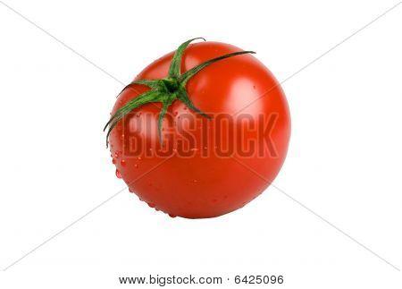 Wet juicy tomato