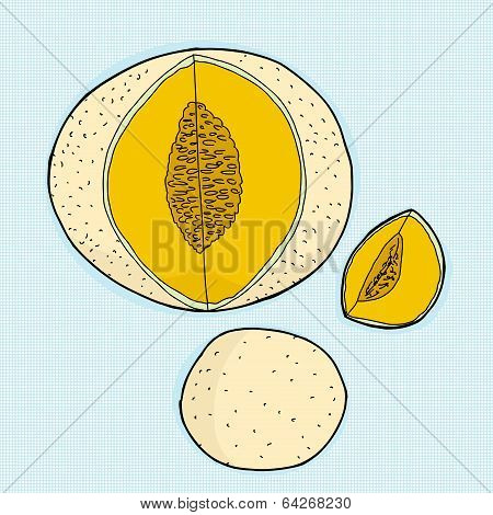 Various Canteloupe Melons