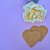 stock photo of sweetheart  - a couple of sweethearts and a fake rose flower - JPG