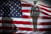 image of veterans  - Great for 4th of July Memorial Day or Veterans day - JPG