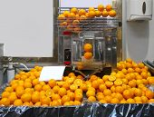 pic of juicer  - Big juicer machine for fresh orange juice - JPG