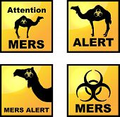 foto of dromedaries  - Set of vector Coronavirus alert icons  with dromedary silhouette - JPG