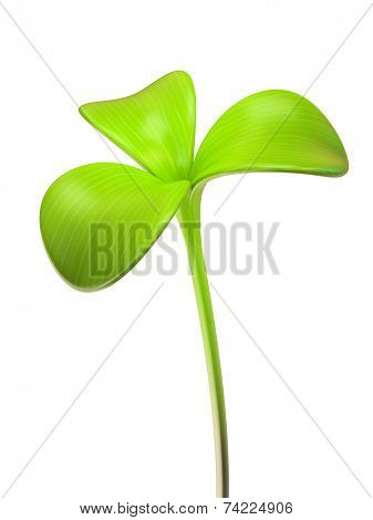 young green sprout three leaf 3D