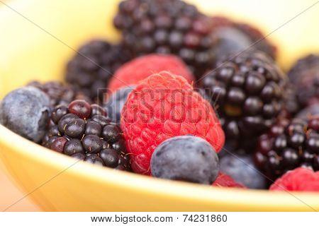 Macro Picture Of Fresh Berries