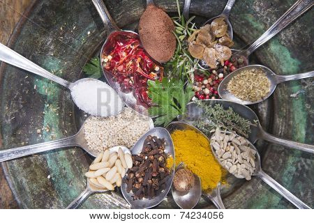 The Spices In The Kitchen