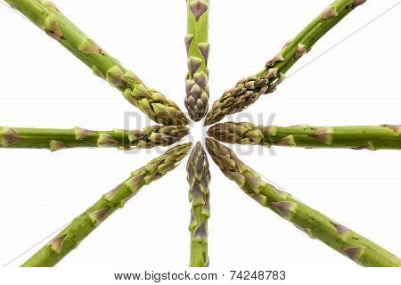 Eight Asparagus Spears Define The Center