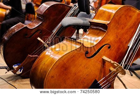 double basses during the break