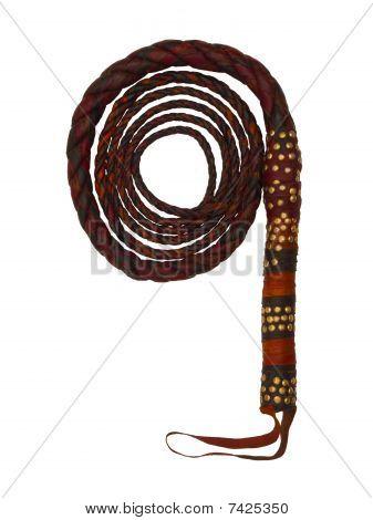 Camel Skin Whip