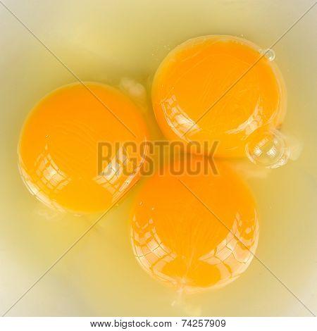 Egg Yolks And Whites