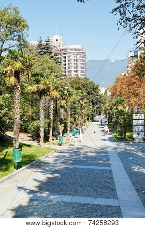 Tourists On Palm Alley In Primorskiy Park In Yalta