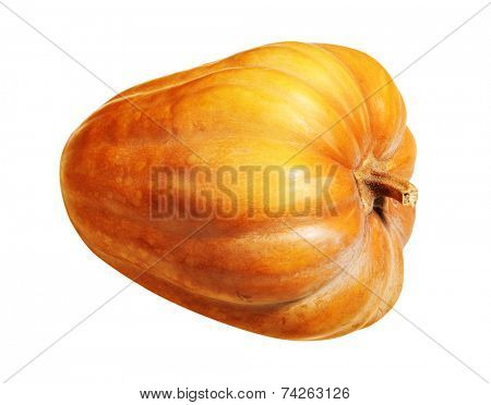mellow pumpkin isolated on white background with path