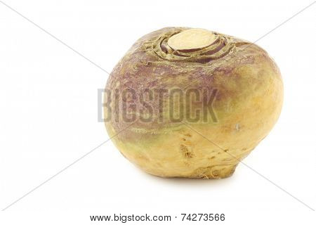 fresh turnip(Brassica rapa rapa) on a white background