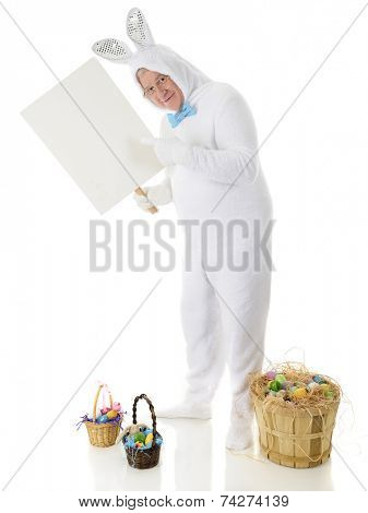 A senior male rabbit pointing to the sign he holds.  It's left blank for your text.  He stands among baskets of colorful Easter eggs.  On a white background.