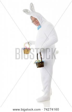 A senior male Easter bunny looking back at the viewer as he's off to deliver two small baskets of goodies.  On a white background.