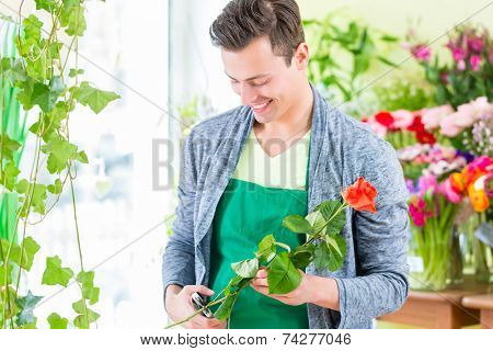 Young handsome florist cutting rose with tongs in shop