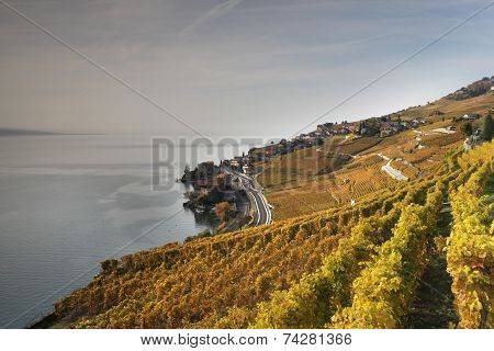 Autumn View Over Lake Geneva From The Lavaux Vines.