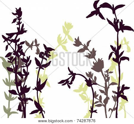 Vector background with herbal silhouettes
