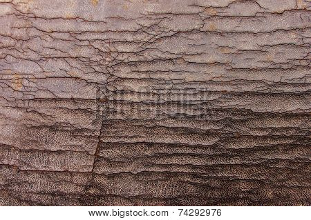 Weathered Leather Background