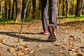 stock photo of pole  - Nordic walking - JPG