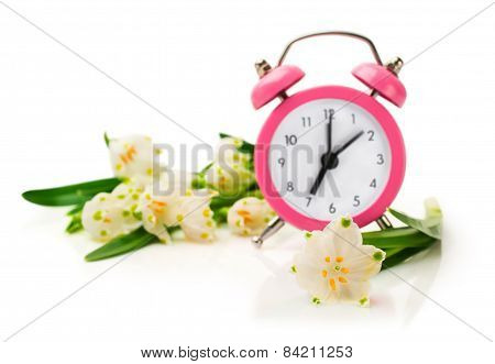 Snowdrops And Pink Alarm Clock