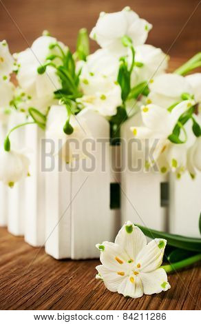 Snowdrops On A Wooden Background