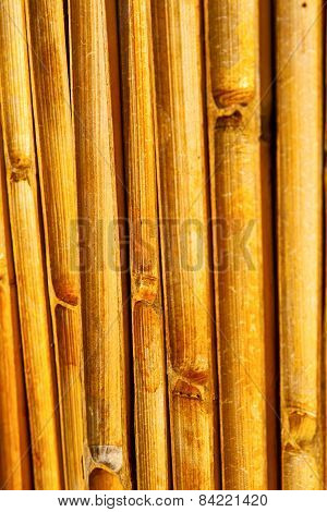 Abstract Cross Bamboo In The Temple Kho   South