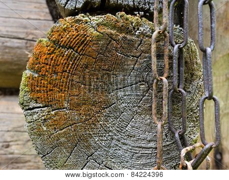Old Wooden Painted  Rustic Background, Paint Peeling