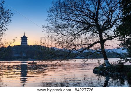 Black Trees Silhouette And Traditional Chinese Pagoda
