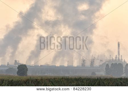 Petrochemical  Plant Located Nearby Pineapple Field , During Morning