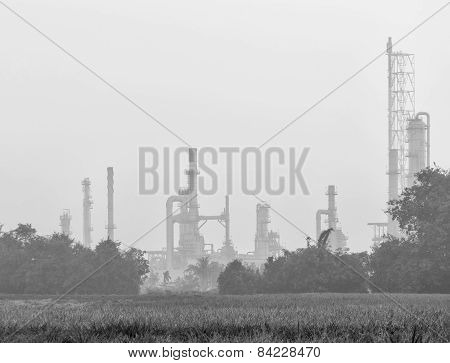 Petrochemical  Plant Located Nearby Pineapple Field In Black And White , During Morning